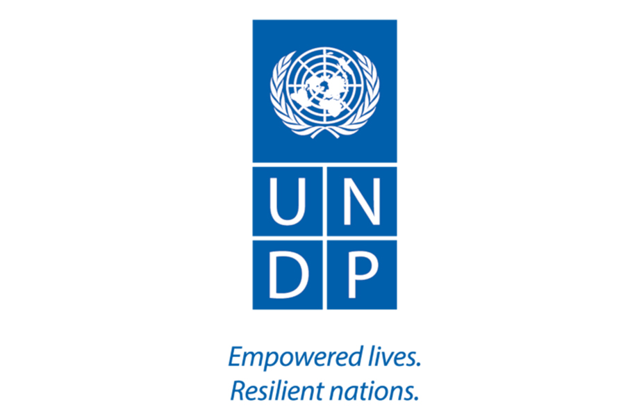 UNDP-2