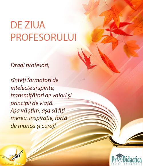prof-3